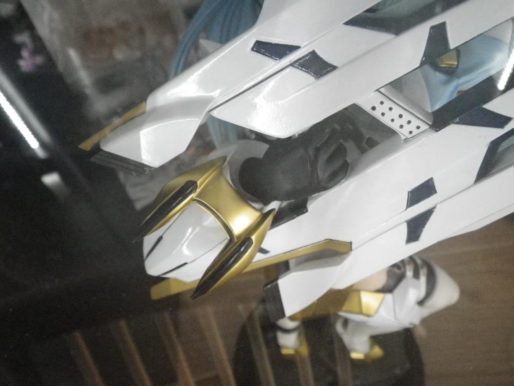 IMGP0455